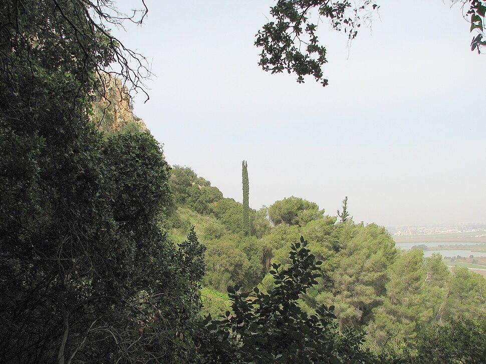Yagur – Nesher, the Green Path – Mount Carmel 052