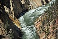 Yellowstone River (Grand Canyon of the Yellowstone, Wyoming, USA) 4 (46748784605).jpg