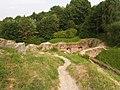 Zamek w Tarnowie ffolas 05.jpg