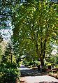 Zentralfriedhof Ibbenbueren 04.jpg