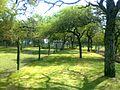 Zoo Municipal de Mercedes - panoramio (14).jpg