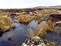 """""""Ford"""" at Loch Salachaidh - geograph.org.uk - 710968.jpg"""