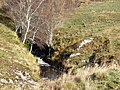 """Wee burn"" just above Caplich Estate house - geograph.org.uk - 597365.jpg"