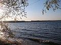 Вокруг Первого озера - panoramio (8).jpg