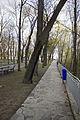 Володимирська гірка 02.jpg