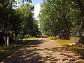 Вулиця Лісова (Защита).JPG