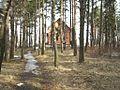 Дом за деревьями - panoramio.jpg