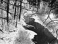 Зима в Гилевской роще (2).jpg