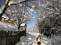 Зима и лето во село Тајмиште 01.jpg