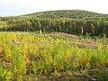 Золотая осень на Малых Чертях (Golden autumn) - panoramio.jpg