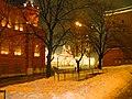 МАСЛЕННИЦА, КРАСНАЯ Пл., MOSCOW, RUSSIA - panoramio - Oleg Yu.Novikov (19).jpg