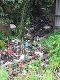 Невская Дубровка, свалка мусора за гаражами, на склоне. - panoramio.jpg