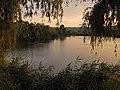 Озеро Директорське у селі Бузьке (Вознесенський район).jpg