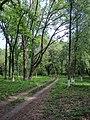 Парк Глібова, Веселий Поділ, 06.jpg