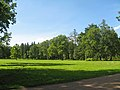 Пушкин. Александровский парк. Поляна у Белой башни.jpg