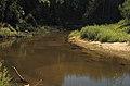 Река Илеть 25.jpg