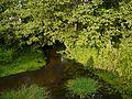 Река Пошма в Григорове - panoramio.jpg