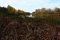 Река Урал в западном направлении - panoramio.jpg