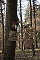 Сирецький дендрологічний парк 14.jpg