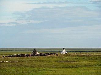 Yamalo-Nenets Autonomous Okrug - Nenets people in 2014