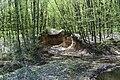Теліженецький ліс Видобуток глини DSC 0037.jpg