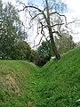 Укрепления войск М.И. Кутузова близ села Тарутино - panoramio.jpg