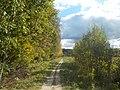 Широколиственный лес Подольского лесничества 03.jpg