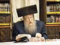 הרב שמואל דוד הלוי אונגאר פון נייטרא 2014-08-19 00-35.JPG