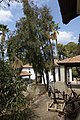 מוזיאון לתולדות גדרה והבילויים - אתרי מורשת במרכז הארץ 2015 - גדרה (140).JPG