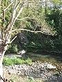 น้ำรัง ที่ อ.ปางมะพ้า - panoramio - ----=UT=----.jpg