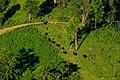 อุทยานแห่งชาติทับลาน5.jpg