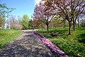 前田森林公園 (Maeda forest park) - panoramio (1).jpg