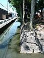 大和高田市松塚 市杵嶋神社外周の環濠 Circular moat of Matsuzuka 2011.7.17 - panoramio.jpg