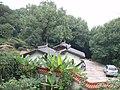 茶花园入口 - panoramio.jpg