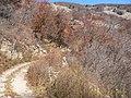 都山水源地 water source - panoramio - 白云悠悠.jpg