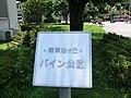陽東桜が丘 パイン公園 2011年7月 - panoramio (1).jpg