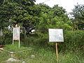 04698jfDuale Townsite Brodge Overpass Limay Bataan Expresswayfvf 15.JPG