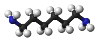 Ball and stick model of hexamethylenediamine