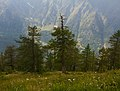 13 laghi, Prali, Val Germanasca, Piemonte.jpg