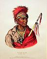 1833 Catlin Not-Chi-Mi-Ne, Ioway Chief anagoria.jpg