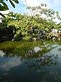 187Photos taken during 2020 coronavirus pandemic Meycauayan, Bulacan 47.jpg