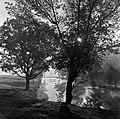 1960 étang du CNRZ Cliché Jean-Joseph weber-2.jpg