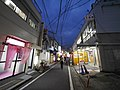 1 Chome Ōfuna, Kamakura-shi, Kanagawa-ken 247-0056, Japan - panoramio (80).jpg