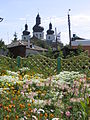 2005-08-16 Nizhyn 349.JPG