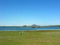 2008-05-21 13 03 59 Iceland-Skútustaðir.jpg
