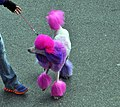2013-11-23 Thanksgiving Parade Silver Spring 441 (11029850015).jpg