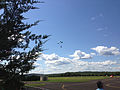 2014-08-24 15 05 38 Skydivers parachuting to the ground at Pennridge Airport in East Rockhill Township, Pennsylvania.JPG