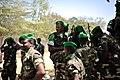 2014 01 22 Ethiopia Welcome Ceremony 011.jpg (12087190213).jpg