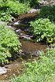 2014 Prowincja Sjunik, Rzeka Szaki (01).jpg