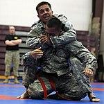 2015 USARAK Combatives Tourney 150604-F-LX370-055.jpg